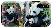 Panda Valley IPhone X Tough Case