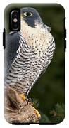 Peregrine Falcon IPhone X Tough Case