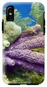 Purple Sponge IPhone X Tough Case