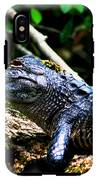 Resting Alligator  IPhone X Tough Case