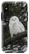 Snowy Owl IPhone X Tough Case