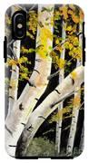 Spring Birch IPhone X Tough Case