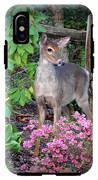 Spring Deer IPhone X Tough Case