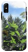 Sunflowers In Sunshine IPhone X Tough Case