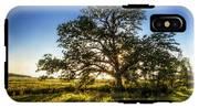 Sunset Oak IPhone X Tough Case