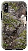 Switchback Goat 4 IPhone X / XS Tough Case
