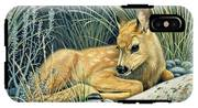 Waiting For Mom-mule Deer Fawn IPhone X Tough Case