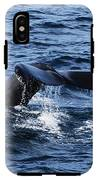 Whale  IPhone X Tough Case