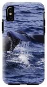 Whale Tail 2 IPhone X Tough Case