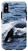 Whales Family IPhone X Tough Case
