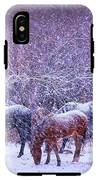 Wild Horse Christams IPhone X Tough Case