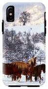 Wild Winter  IPhone X Tough Case