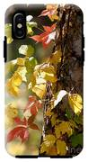 Autumn Colors IPhone X Tough Case