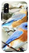 Bluebird Couple IPhone X Tough Case