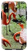 Flamingo Face-off IPhone X Tough Case