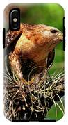 Red-shouldered Hawk With Breakfast IPhone X Tough Case