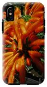Wild Dagga IPhone X Tough Case