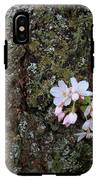 Cherry Blossoms IPhone X Tough Case