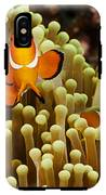 Clown Anemonefish IPhone X Tough Case