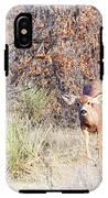Mule Deer Doe IPhone X Tough Case