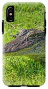 Alligator Up Close  IPhone X Tough Case