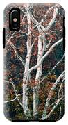 American Sycamore # 2 IPhone X Tough Case