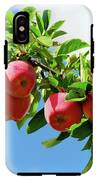 Apples On A Branch IPhone X Tough Case