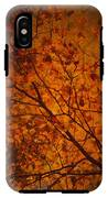Autumn Colours IPhone X Tough Case