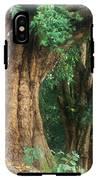 Banyan Tree Haleakala National Park IPhone X Tough Case