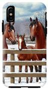 Bay Quarter Horses In Snow IPhone X Tough Case