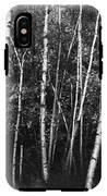 Birch Trees IPhone X Tough Case
