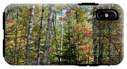 Birches In Fall Forest IPhone X Tough Case