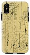 Cajal Drawing Of Microscopic Structure Of The Brain 1904 IPhone X Tough Case