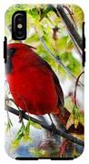 Cardinal 1 IPhone X Tough Case