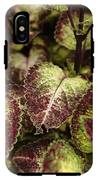 Coleus Plant IPhone X Tough Case