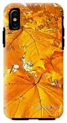 Color Of The Leaves IPhone X Tough Case