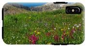 Colorado 14er Handies Peak IPhone X Tough Case