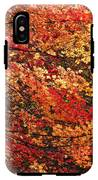 Colors Blowing In The Wind IPhone X Tough Case