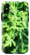 Cypress Leaves Close Up IPhone X Tough Case