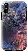 Desert Floor IPhone X Tough Case