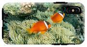 Dusky Clownfish IPhone X Tough Case