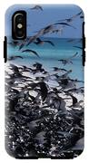 Flying Terns  On The Great Barrier Reef IPhone X Tough Case