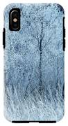 Frosted Beauty IPhone X Tough Case