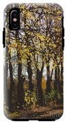Golden Trees 1 IPhone X / XS Tough Case