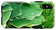 Hosta Leaves And Waterdrops IPhone X Tough Case