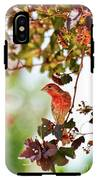 House Finch Hanging Around IPhone X Tough Case