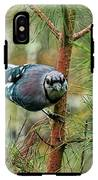 Jay Painterly IPhone X Tough Case