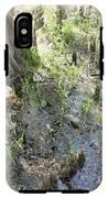 Lettuce Lake Swampland IPhone X Tough Case