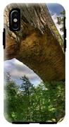 Natural Bridge Span IPhone X Tough Case