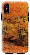 Path Through New England Fall Foliage IPhone X Tough Case